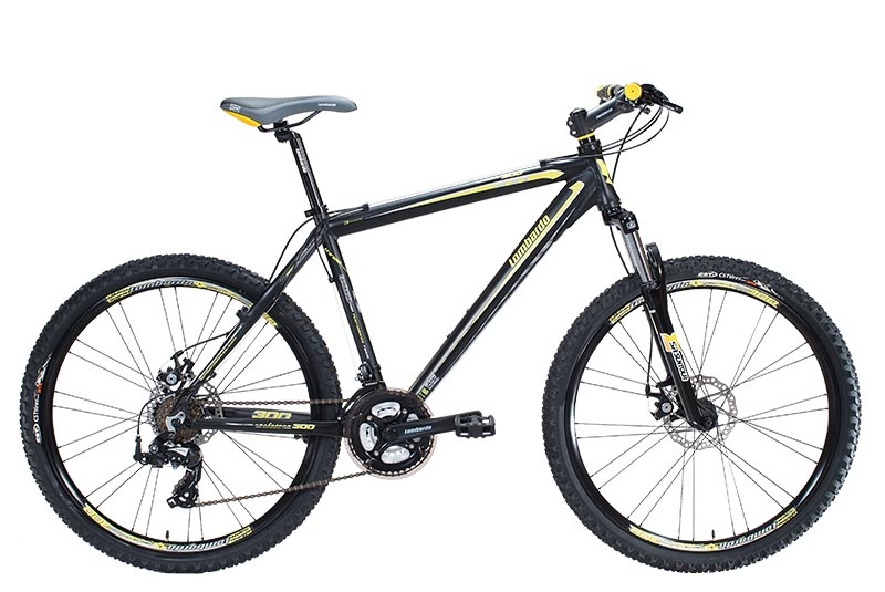 Mountain Bike Sestriere 300
